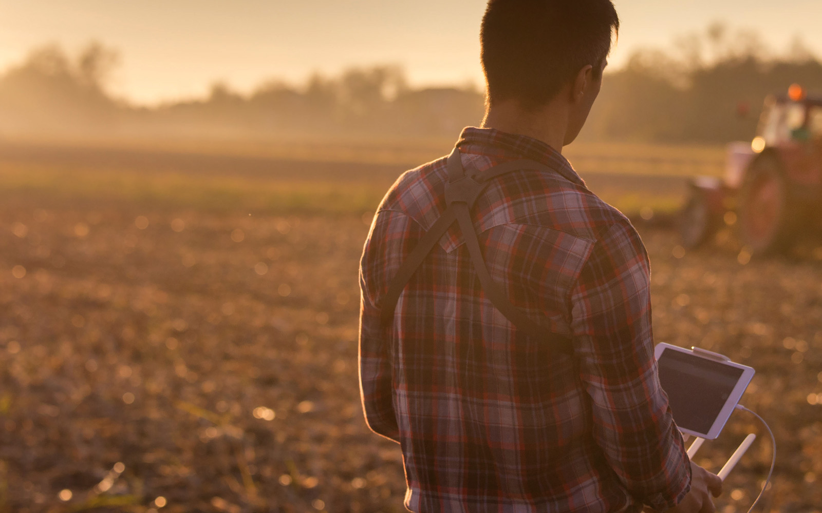 A person standing in a field