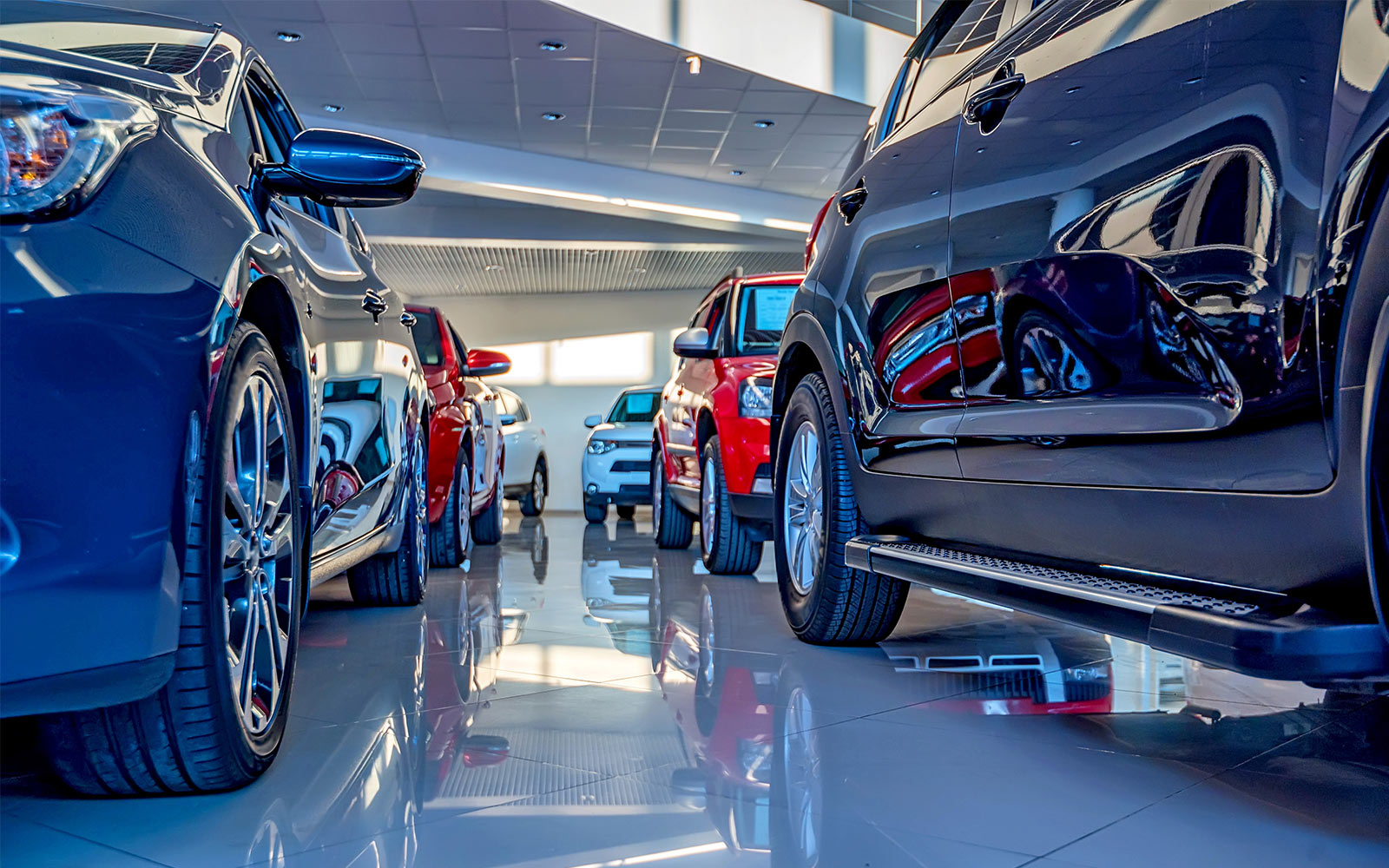 Ground view of cars in a dealership